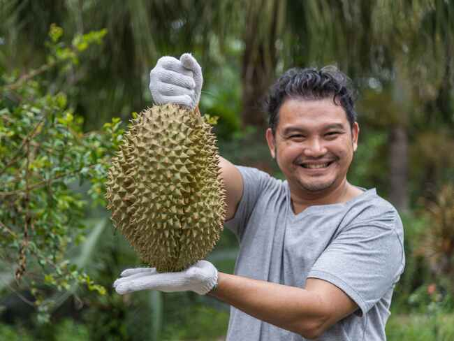 All You Need To Know About Durian Fruit